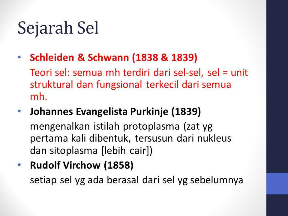 Sejarah Sel Schleiden & Schwann (1838 & 1839) Teori sel: semua mh terdiri dari sel-sel, sel = unit struktural dan fungsional terkecil dari semua mh. J