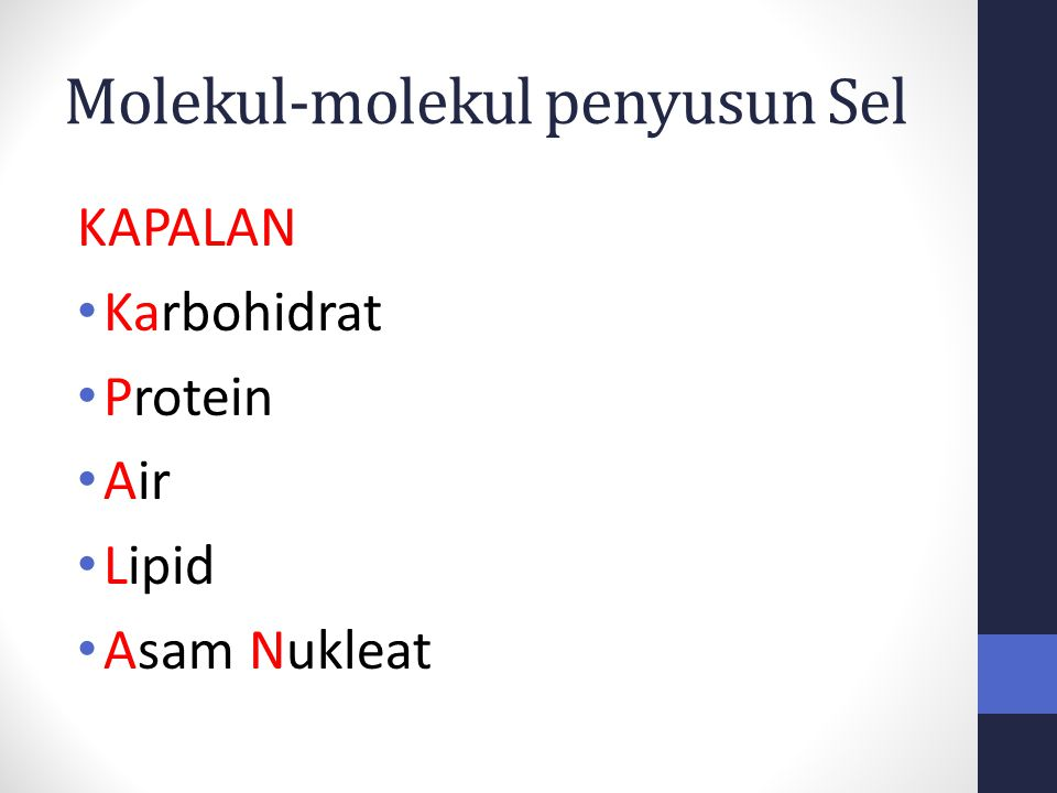 Molekul-molekul penyusun Sel KAPALAN Karbohidrat Protein Air Lipid Asam Nukleat