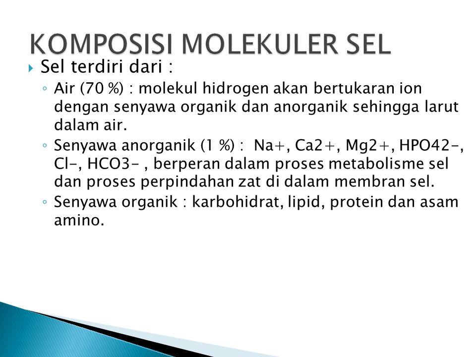  Sel terdiri dari : ◦ Air (70 %) : molekul hidrogen akan bertukaran ion dengan senyawa organik dan anorganik sehingga larut dalam air.