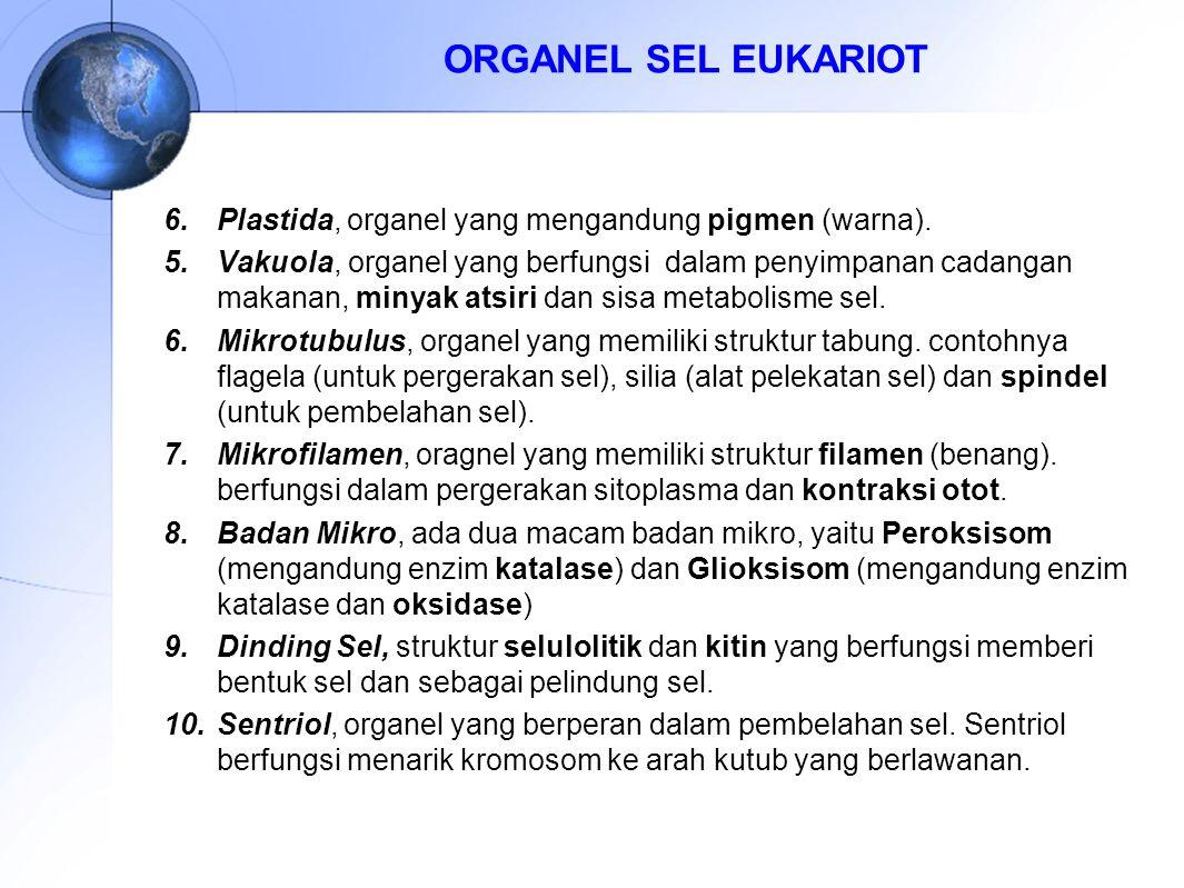 6.Plastida, organel yang mengandung pigmen (warna). 5.Vakuola, organel yang berfungsi dalam penyimpanan cadangan makanan, minyak atsiri dan sisa metab