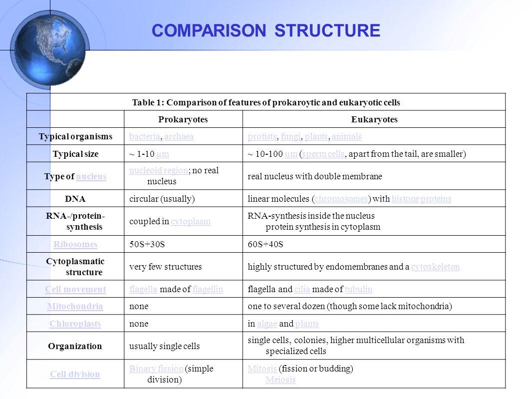 BEDA SEL HEWAN DAN TUMBUHAN Sel Hewan : 1.Punya sentrosom (hanya dipunyai oleh sel hewan) 2.Punya lisosom (hanya dipunyai oleh sel hewan) 3.tidak punya dinding sel 4.Tidak punya butir plastida 5.bentuk tidak tetap karena hanya memiliki membran sel yang keadaannya tidak kaku 6.jumlah mitokondria relatif banyak 7.vakuolanya banyak dengan ukuran yang relatif kecil Sel Tumbuhan 1.Punya dinding sel (hanya dipunyai oleh sel tumbuhan) 2.Punya butir plastida (hanya dipunyai oleh sel tumbuhan) 3.bentuk tetap karena memiliki dinding sel yang terbuat dari cellulos 4.jumlah mitokondria relatif sedikit karena fungsinya dibantu oleh butir plastida 5.vakuola sedikit tapi ukurannya besar 6.sentrosom dan sentriolnya tidak jelas