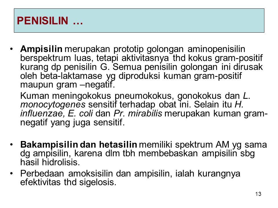 13 PENISILIN … Ampisilin merupakan prototip golongan aminopenisilin berspektrum luas, tetapi aktivitasnya thd kokus gram-positif kurang dp penisilin G