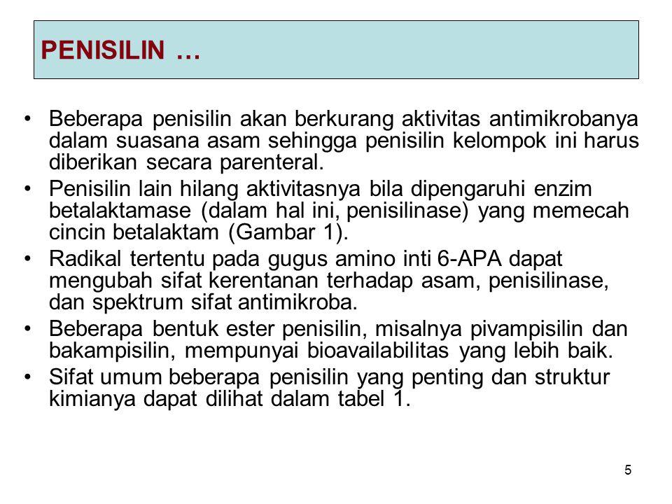 5 PENISILIN … Beberapa penisilin akan berkurang aktivitas antimikrobanya dalam suasana asam sehingga penisilin kelompok ini harus diberikan secara par
