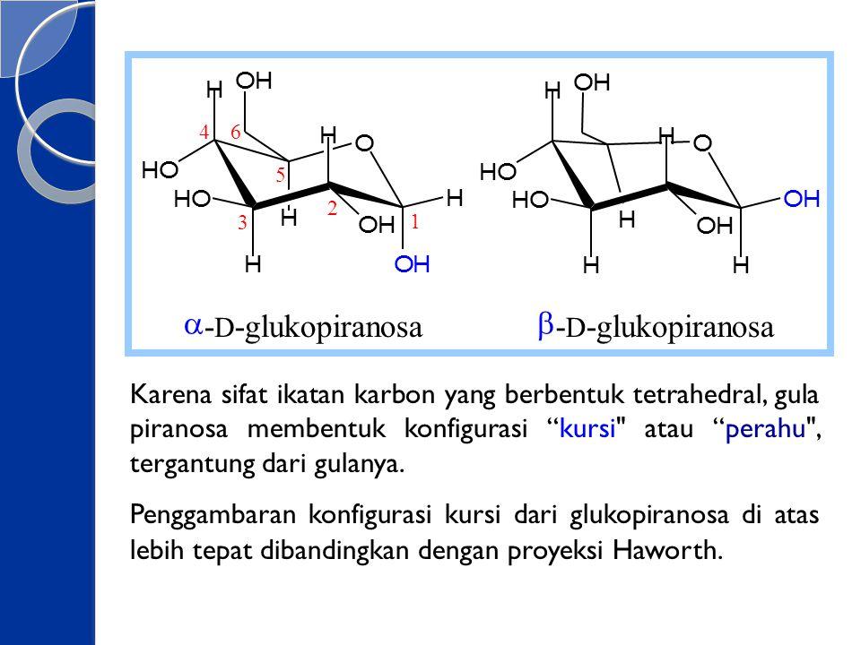 """Karena sifat ikatan karbon yang berbentuk tetrahedral, gula piranosa membentuk konfigurasi """"kursi"""