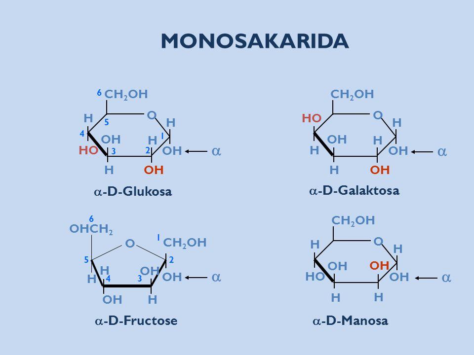 O H HO OH H CH 2 OH O H HO OH H CH 2 OH O HO H OH H CH 2 OH H H H H H H  -D-Glukosa  -D-Manosa  -D-Galaktosa O OH CH 2 OH OHCH 2 H OH H 1 2 3 4 5 6
