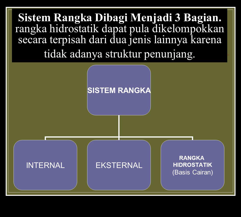 Sistem Rangka Dibagi Menjadi 3 Bagian.