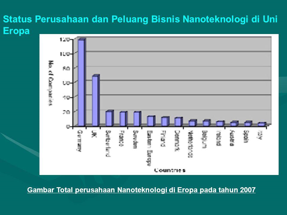 Gambar Total perusahaan Nanoteknologi di Eropa pada tahun 2007 Status Perusahaan dan Peluang Bisnis Nanoteknologi di Uni Eropa