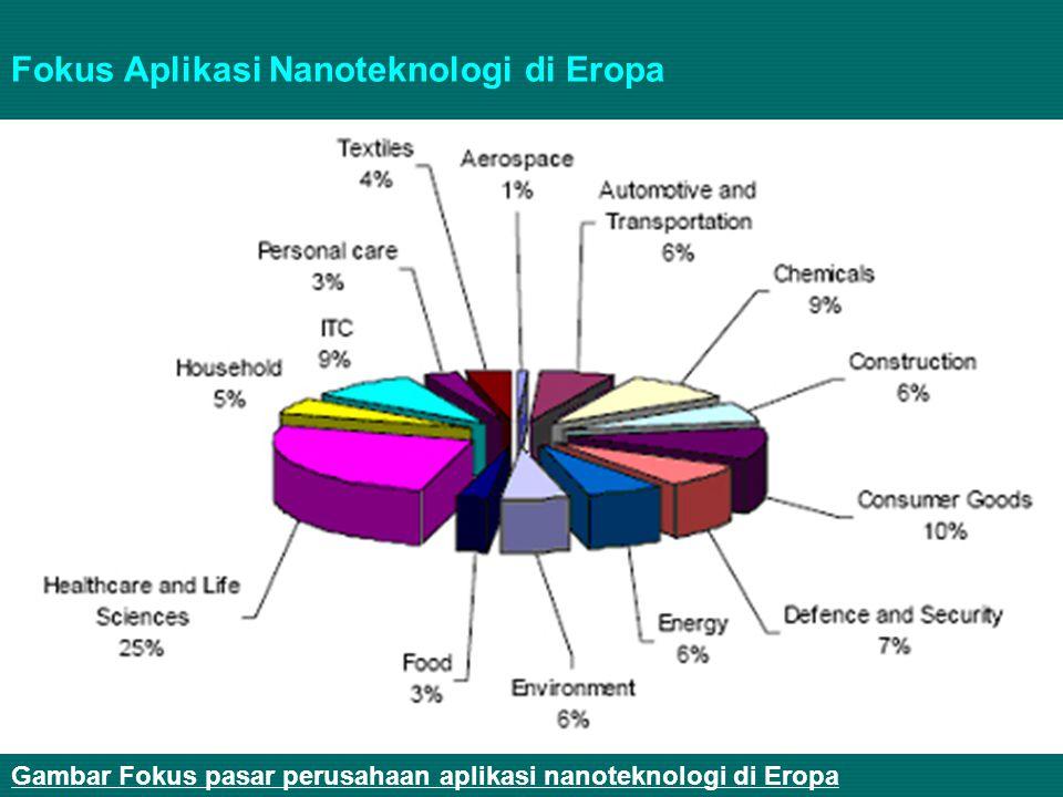 Gambar Fokus pasar perusahaan aplikasi nanoteknologi di Eropa Fokus Aplikasi Nanoteknologi di Eropa