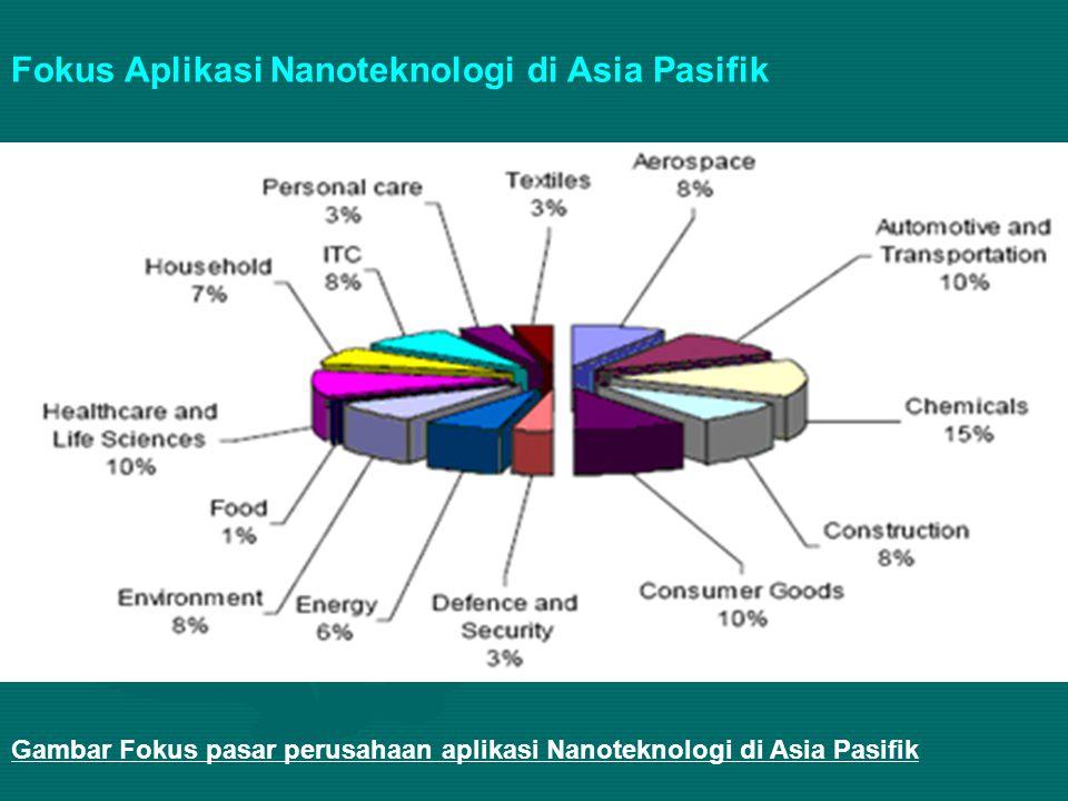 Gambar Fokus pasar perusahaan aplikasi Nanoteknologi di Asia Pasifik Fokus Aplikasi Nanoteknologi di Asia Pasifik