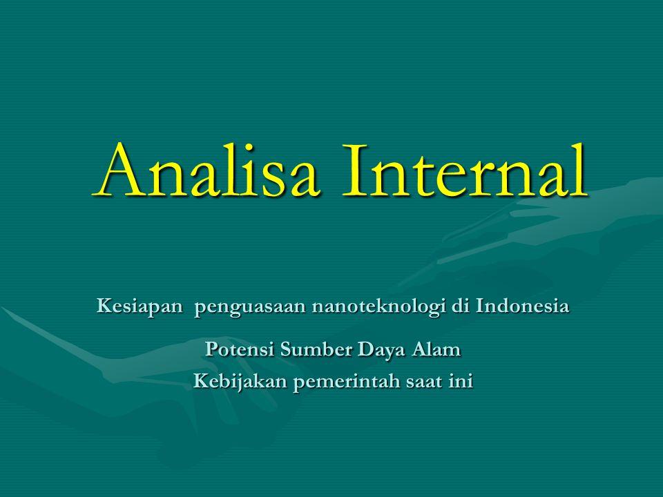 Analisa Internal Kesiapan penguasaan nanoteknologi di Indonesia Potensi Sumber Daya Alam Kebijakan pemerintah saat ini