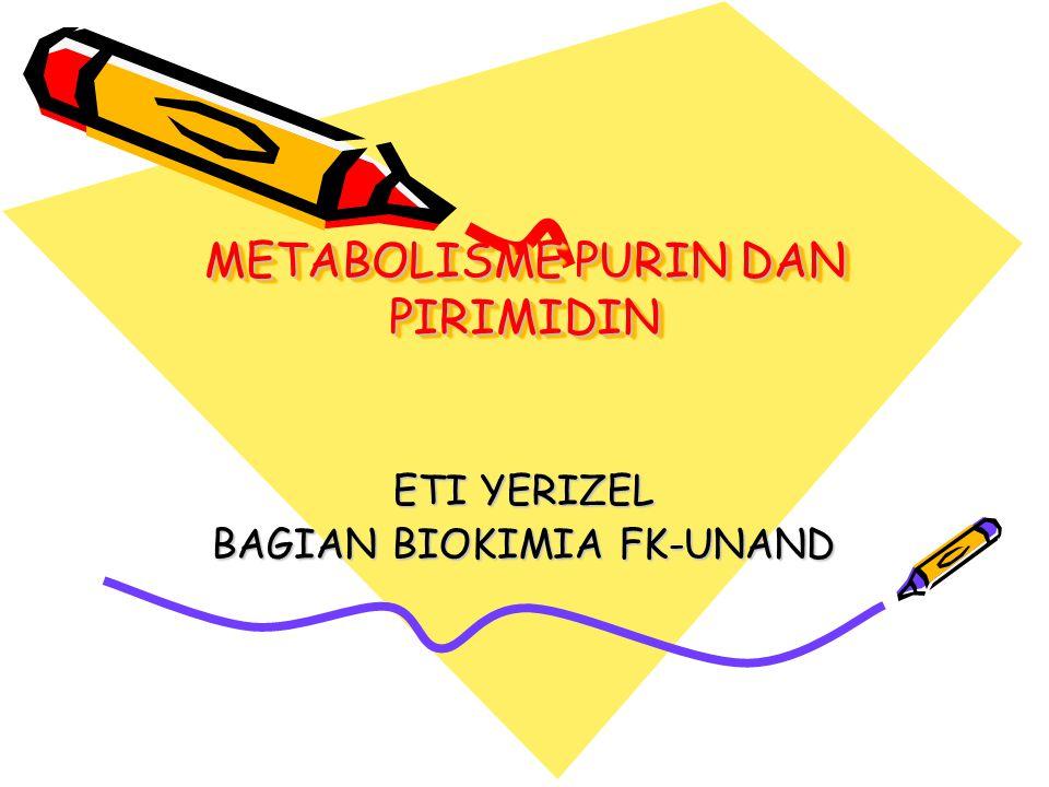 METABOLISME PURIN DAN PIRIMIDIN ETI YERIZEL BAGIAN BIOKIMIA FK-UNAND