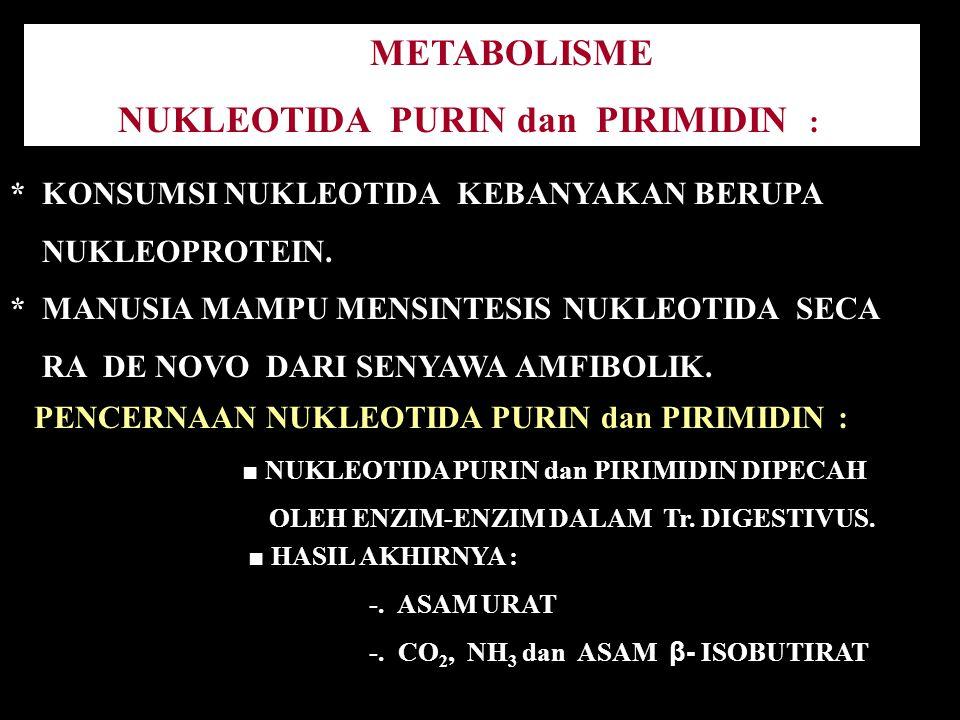 METABOLISME NUKLEOTIDA PURIN dan PIRIMIDIN : * KONSUMSI NUKLEOTIDA KEBANYAKAN BERUPA NUKLEOPROTEIN. * MANUSIA MAMPU MENSINTESIS NUKLEOTIDA SECA RA DE