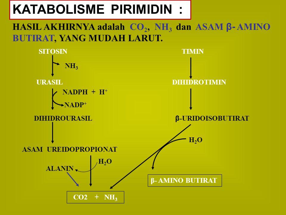 KATABOLISME PIRIMIDIN : HASIL AKHIRNYA adalah CO 2, NH 3 dan ASAM β- AMINO BUTIRAT, YANG MUDAH LARUT. SITOSINTIMIN URASIL DIHIDROTIMIN DIHIDROURASIL β