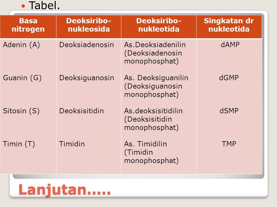 Lanjutan..... Tabel. Basa nitrogen Deoksiribo- nukleosida Deoksiribo- nukleotida Singkatan dr nukleotida Adenin (A) Guanin (G) Sitosin (S) Timin (T) D