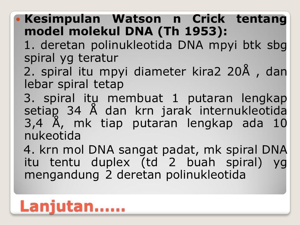 Lanjutan...... Kesimpulan Watson n Crick tentang model molekul DNA (Th 1953): 1. deretan polinukleotida DNA mpyi btk sbg spiral yg teratur 2. spiral i
