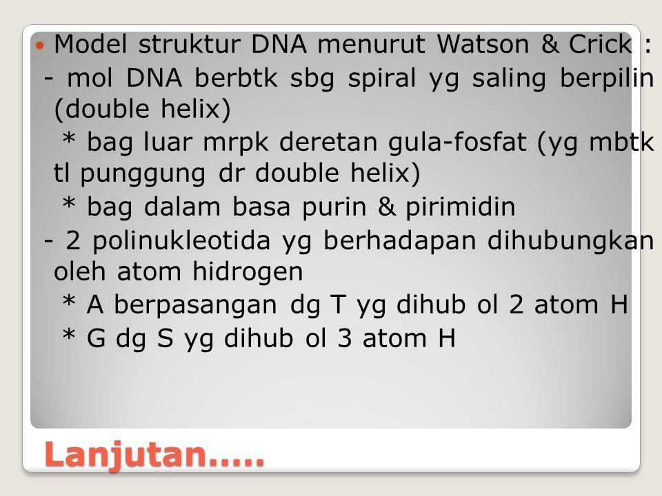 Lanjutan..... Model struktur DNA menurut Watson & Crick : - mol DNA berbtk sbg spiral yg saling berpilin (double helix) * bag luar mrpk deretan gula-f