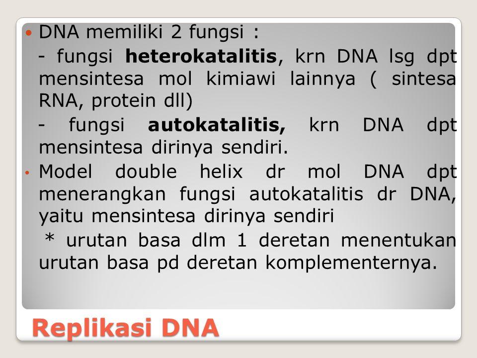 Replikasi DNA DNA memiliki 2 fungsi : - fungsi heterokatalitis, krn DNA lsg dpt mensintesa mol kimiawi lainnya ( sintesa RNA, protein dll) - fungsi au