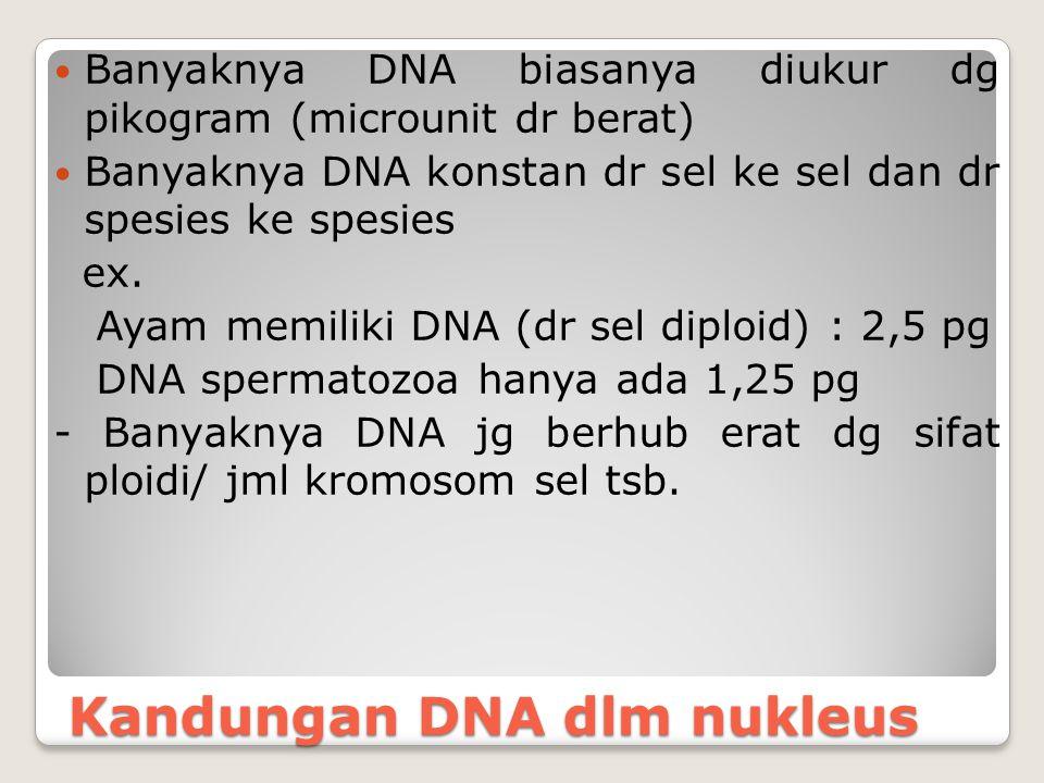 Kandungan DNA dlm nukleus Banyaknya DNA biasanya diukur dg pikogram (microunit dr berat) Banyaknya DNA konstan dr sel ke sel dan dr spesies ke spesies