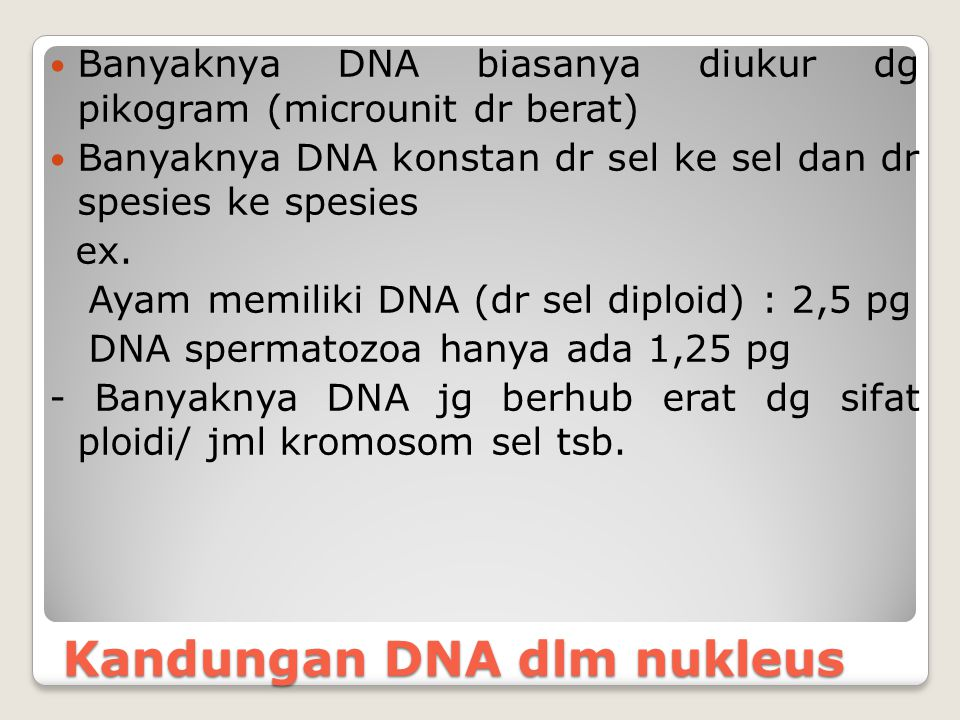 Replikasi DNA DNA memiliki 2 fungsi : - fungsi heterokatalitis, krn DNA lsg dpt mensintesa mol kimiawi lainnya ( sintesa RNA, protein dll) - fungsi autokatalitis, krn DNA dpt mensintesa dirinya sendiri.