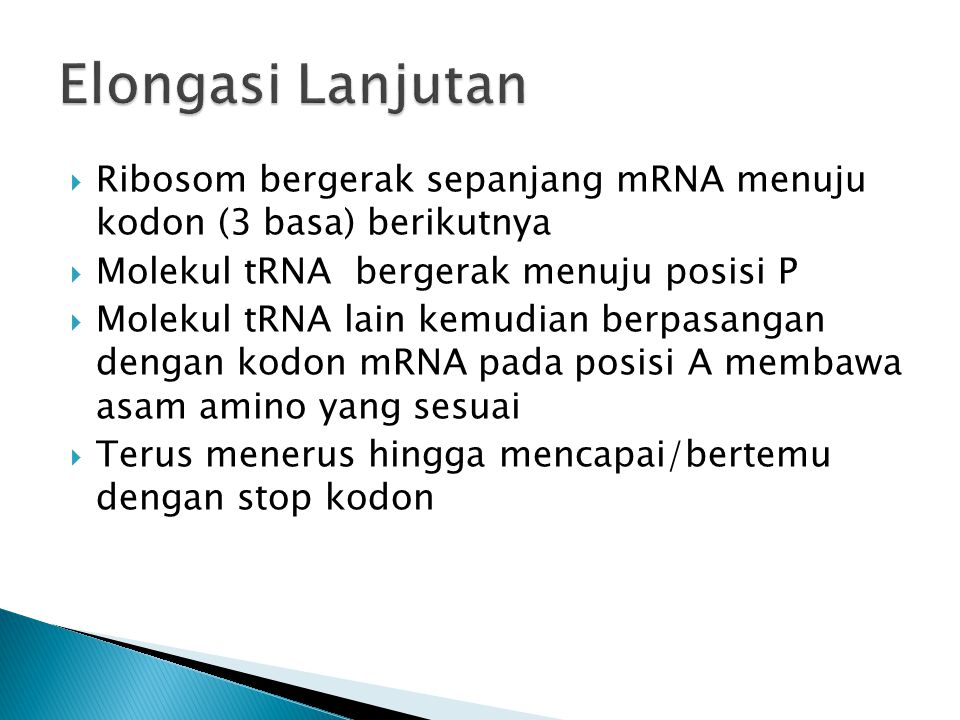 Ribosom bergerak sepanjang mRNA menuju kodon (3 basa) berikutnya  Molekul tRNA bergerak menuju posisi P  Molekul tRNA lain kemudian berpasangan de
