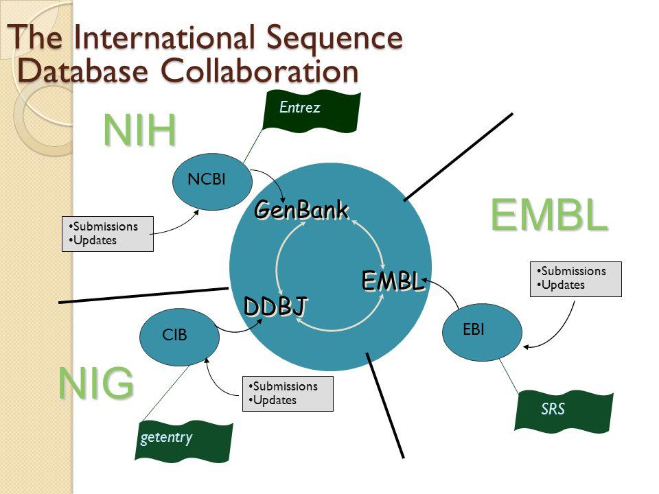 25 Output design primer PCR Urutan oligo DNA- Forward Urutan oligo DNA- reversed