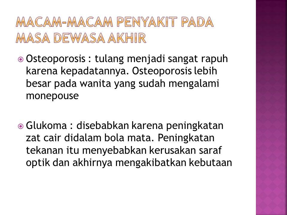  Osteoporosis : tulang menjadi sangat rapuh karena kepadatannya.