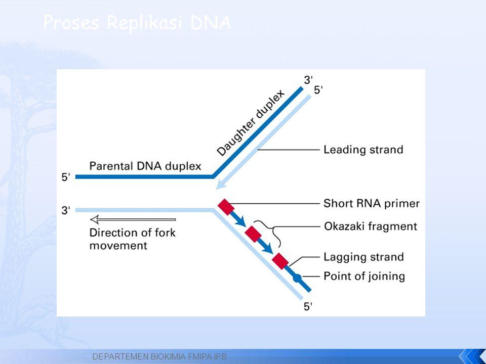 Proses Replikasi DNA DEPARTEMEN BIOKIMIA FMIPA IPB