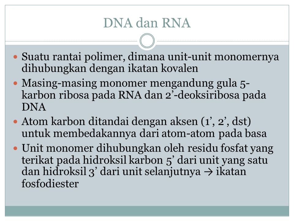 DNA dan RNA Suatu rantai polimer, dimana unit-unit monomernya dihubungkan dengan ikatan kovalen Masing-masing monomer mengandung gula 5- karbon ribosa pada RNA dan 2'-deoksiribosa pada DNA Atom karbon ditandai dengan aksen (1', 2', dst) untuk membedakannya dari atom-atom pada basa Unit monomer dihubungkan oleh residu fosfat yang terikat pada hidroksil karbon 5' dari unit yang satu dan hidroksil 3' dari unit selanjutnya → ikatan fosfodiester