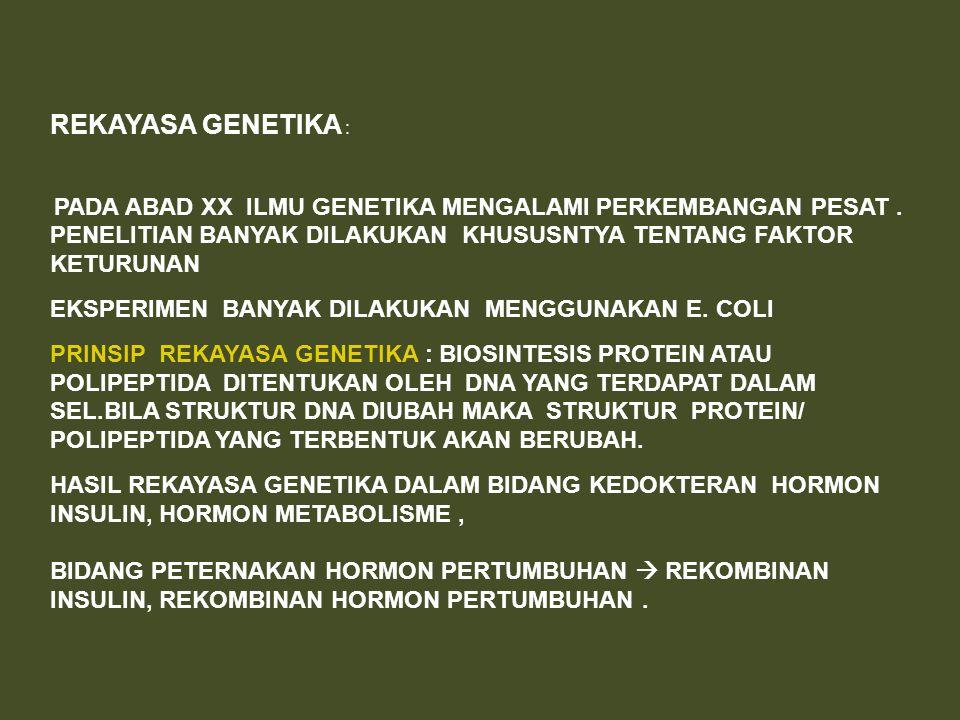 REKAYASA GENETIKA : PADA ABAD XX ILMU GENETIKA MENGALAMI PERKEMBANGAN PESAT. PENELITIAN BANYAK DILAKUKAN KHUSUSNTYA TENTANG FAKTOR KETURUNAN EKSPERIME