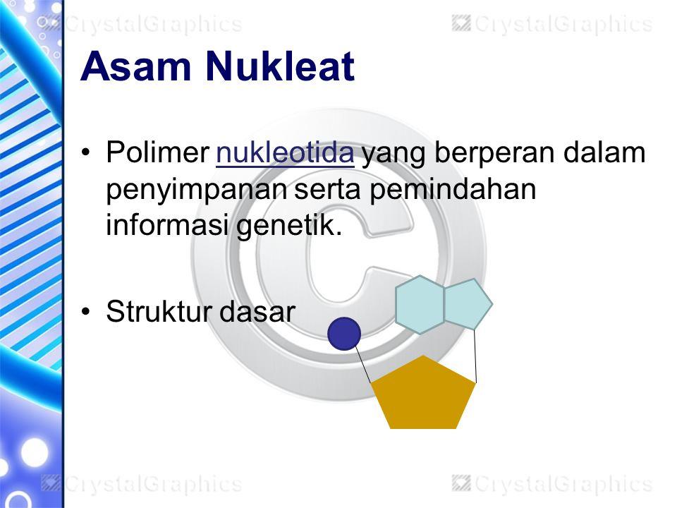 Asam Nukleat Polimer nukleotida yang berperan dalam penyimpanan serta pemindahan informasi genetik. Struktur dasar