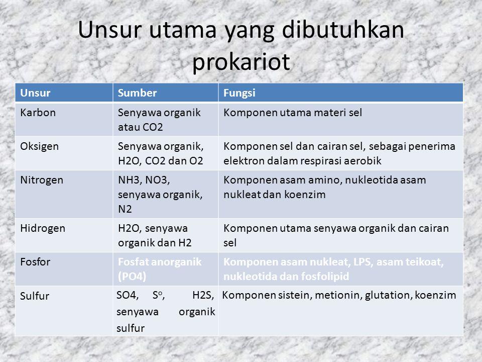 Unsur utama yang dibutuhkan prokariot UnsurSumberFungsi KarbonSenyawa organik atau CO2 Komponen utama materi sel OksigenSenyawa organik, H2O, CO2 dan