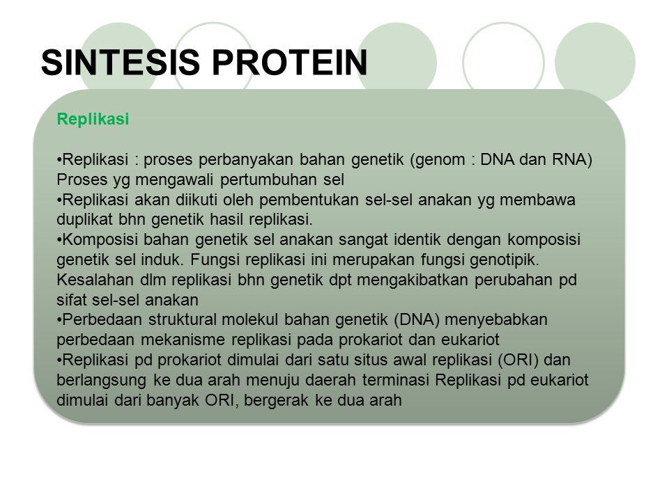 Perbedaan yang utama antara DNA dan RNA yang paling kelihatan yaitu DNA merupakan rantai ganda (double) sedangkan RNA memiliki rantai tunggal (single