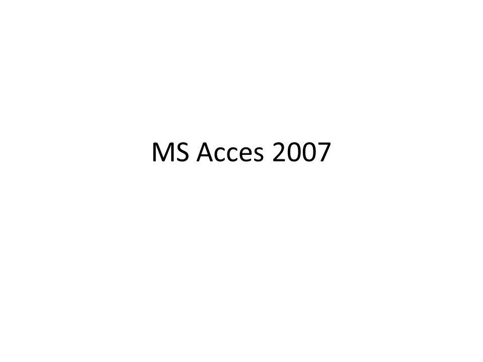 MS Acces 2007