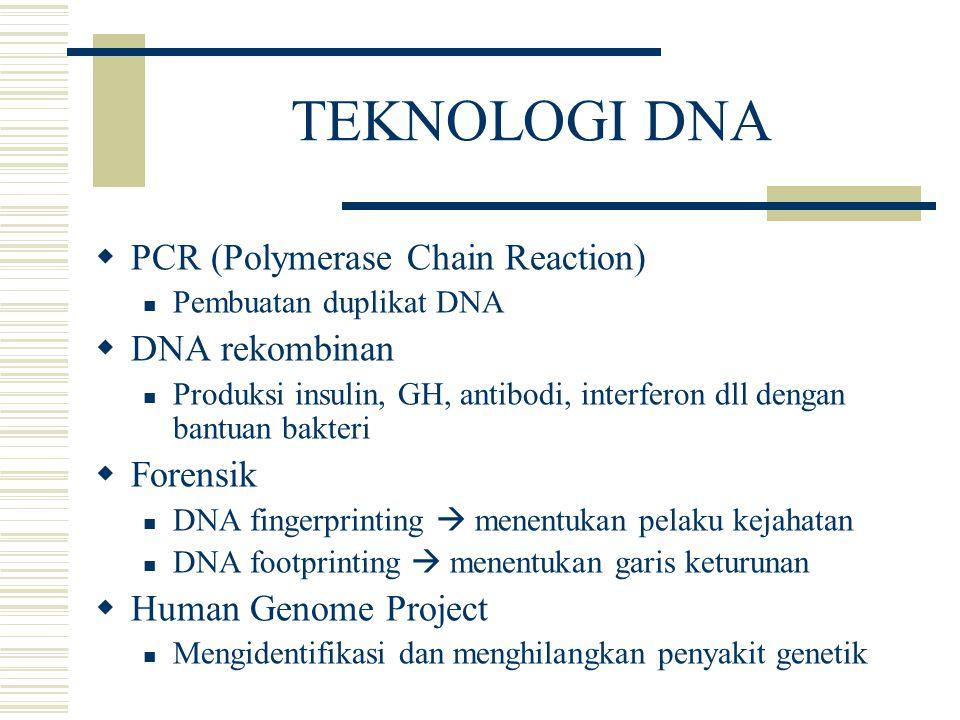 TEKNOLOGI DNA  PCR (Polymerase Chain Reaction) Pembuatan duplikat DNA  DNA rekombinan Produksi insulin, GH, antibodi, interferon dll dengan bantuan
