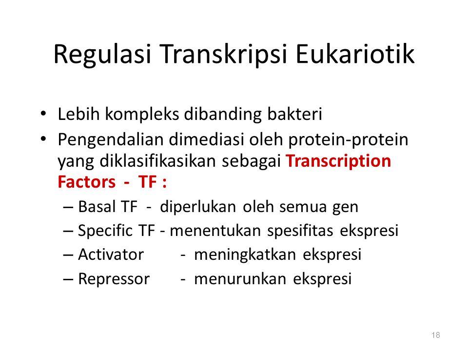 Regulasi Transkripsi Eukariotik Lebih kompleks dibanding bakteri Pengendalian dimediasi oleh protein-protein yang diklasifikasikan sebagai Transcription Factors - TF : – Basal TF - diperlukan oleh semua gen – Specific TF - menentukan spesifitas ekspresi – Activator - meningkatkan ekspresi – Repressor- menurunkan ekspresi 18