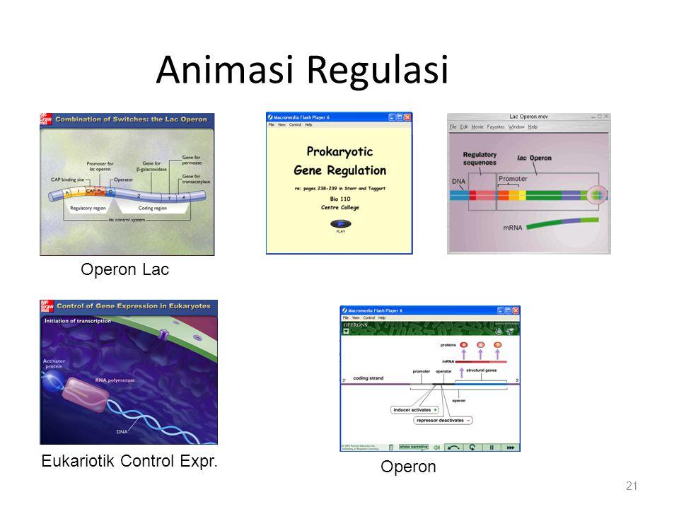 Animasi Regulasi 21 Operon Lac Eukariotik Control Expr. Operon