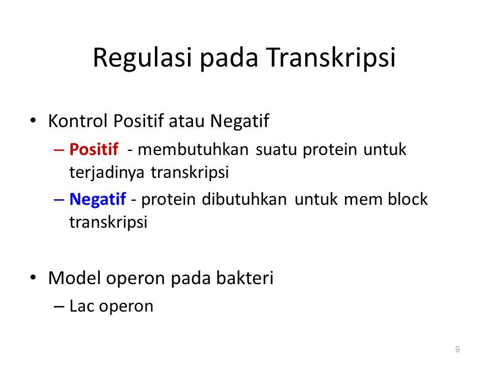 Regulasi pada Transkripsi Kontrol Positif atau Negatif – Positif - membutuhkan suatu protein untuk terjadinya transkripsi – Negatif - protein dibutuhkan untuk mem block transkripsi Model operon pada bakteri – Lac operon 9