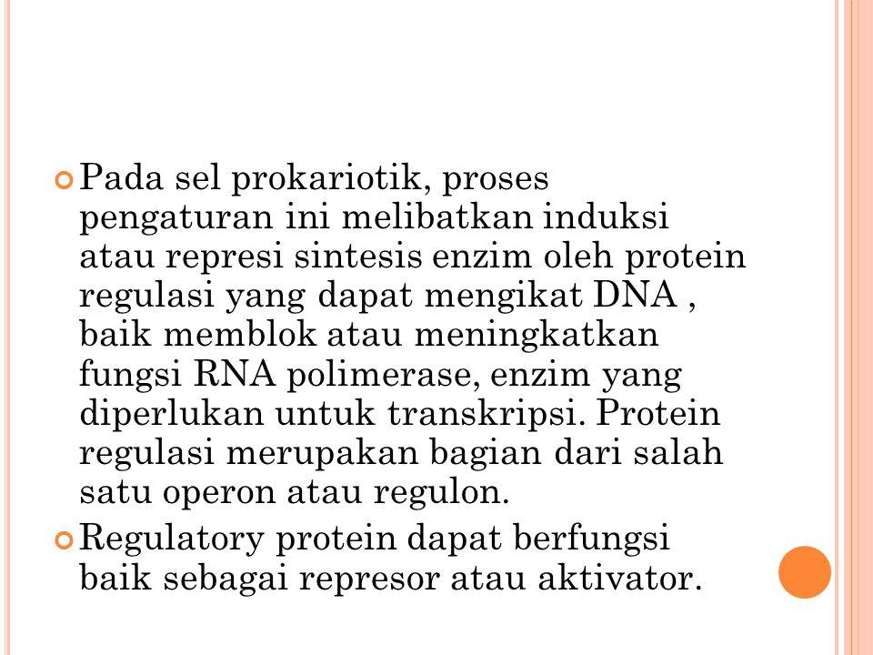 Pada sel prokariotik, proses pengaturan ini melibatkan induksi atau represi sintesis enzim oleh protein regulasi yang dapat mengikat DNA, baik memblok