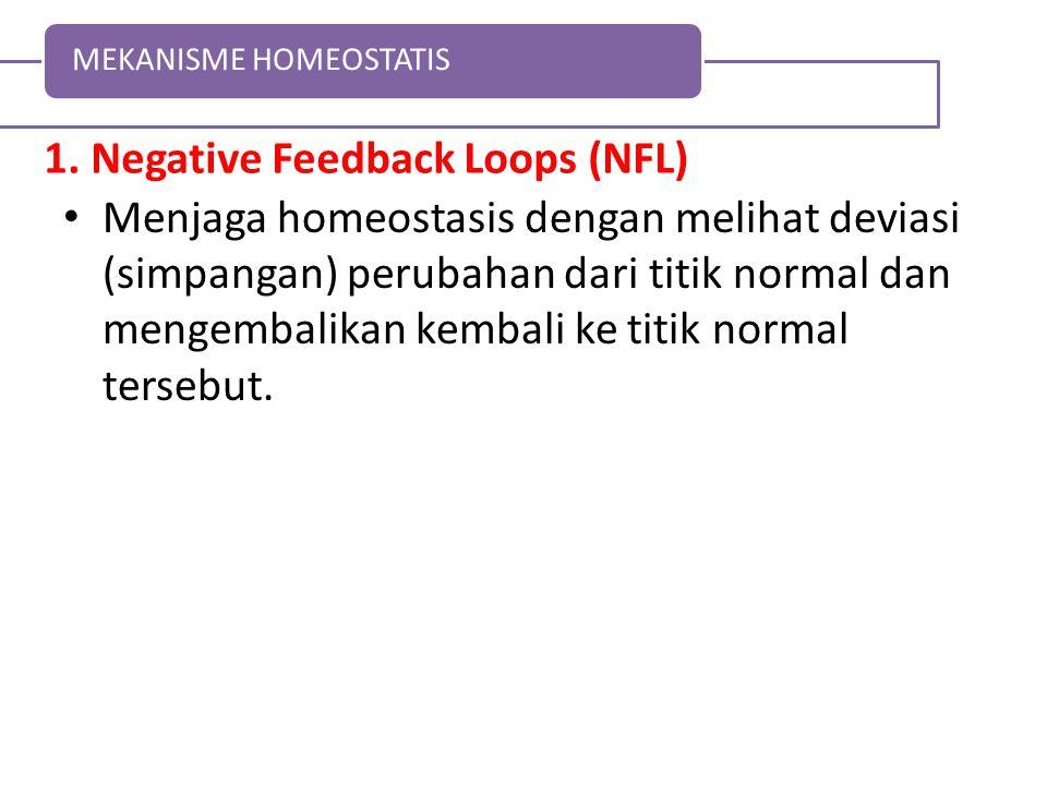 1. Negative Feedback Loops (NFL) Menjaga homeostasis dengan melihat deviasi (simpangan) perubahan dari titik normal dan mengembalikan kembali ke titik