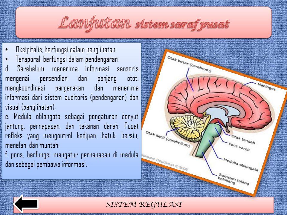 SISTEM REGULASI Oksipitalis, berfungsi dalam penglihatan. Teraporal, berfungsi dalam pendengaran d. Serebelum menerima informasi sensoris mengenai per