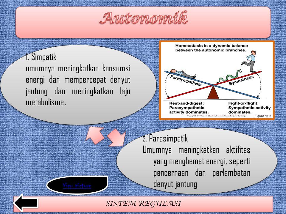SISTEM REGULASI 1. Simpatik umumnya meningkatkan konsumsi energi dan mempercepat denyut jantung dan meningkatkan laju metabolisme. 1. Simpatik umumnya