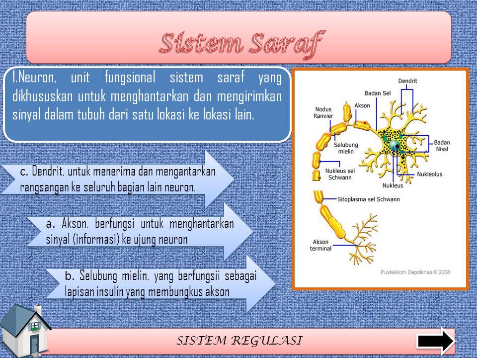 SISTEM REGULASI 1.