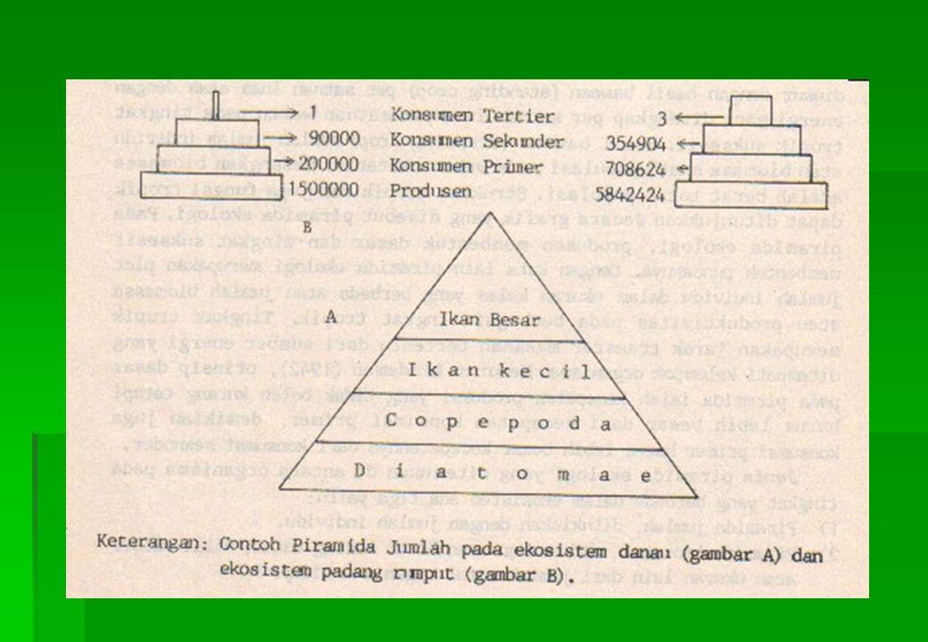 Penamaan Komponen Biotik Dalam Ekosistem Dasar Penamaan Nama Komponen 1.