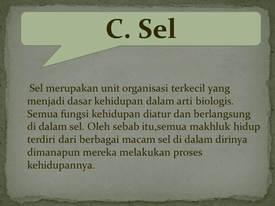 Sel merupakan unit organisasi terkecil yang menjadi dasar kehidupan dalam arti biologis.