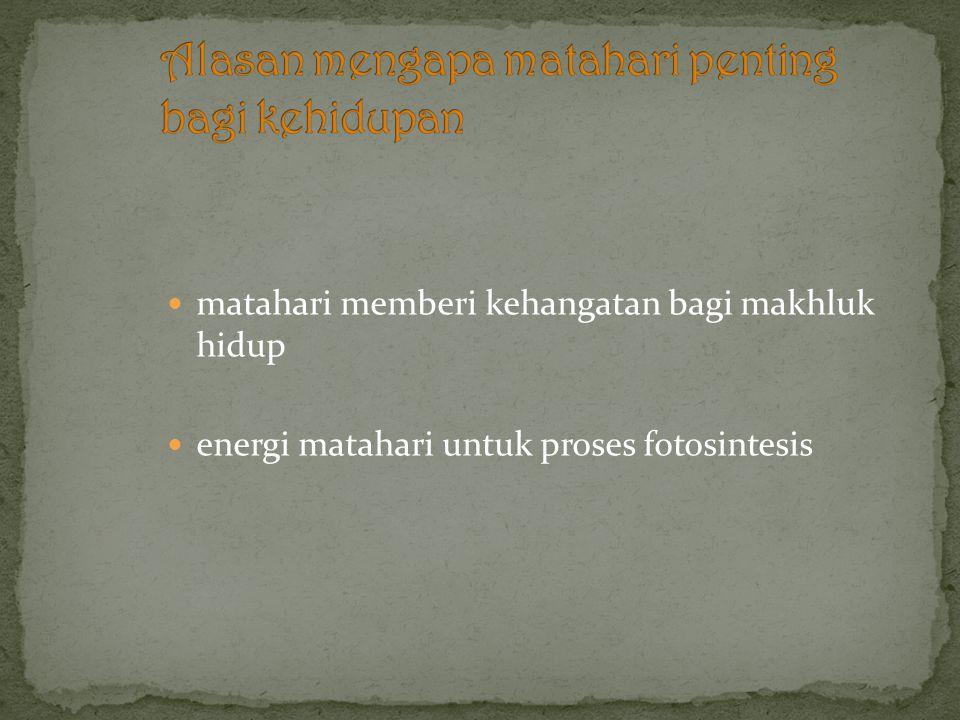 matahari memberi kehangatan bagi makhluk hidup energi matahari untuk proses fotosintesis