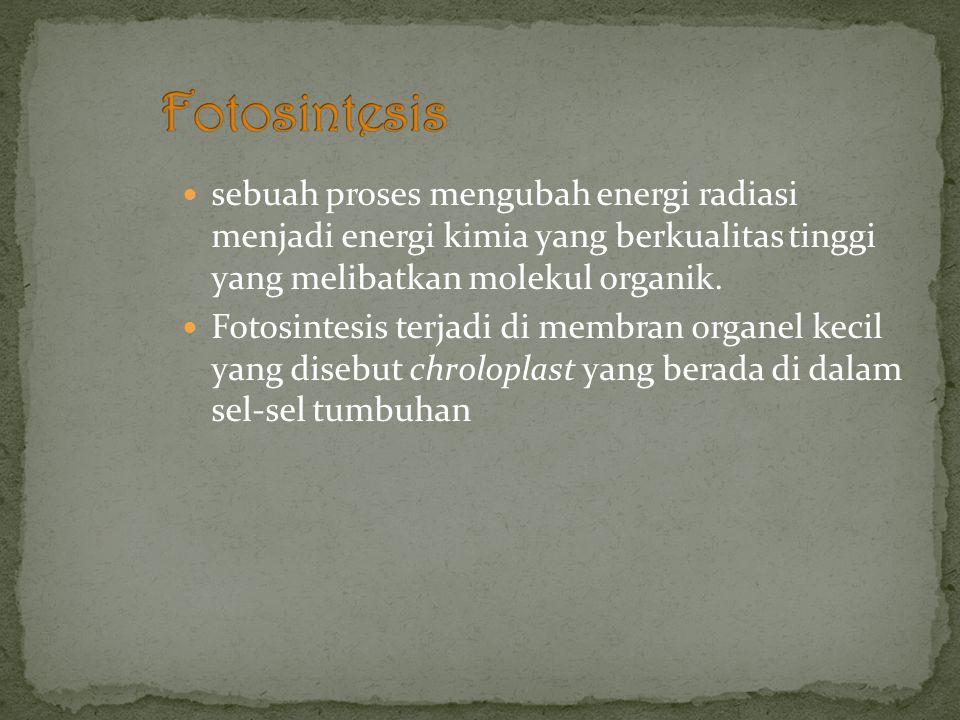 sebuah proses mengubah energi radiasi menjadi energi kimia yang berkualitas tinggi yang melibatkan molekul organik.