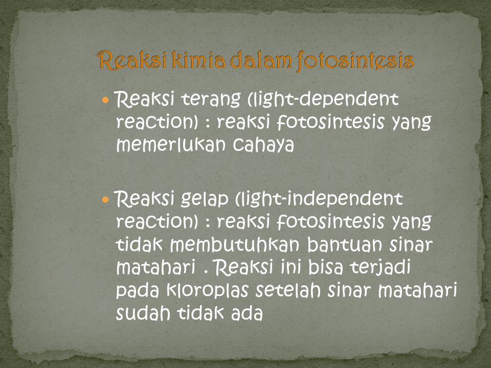 Reaksi terang (light-dependent reaction) : reaksi fotosintesis yang memerlukan cahaya Reaksi gelap (light-independent reaction) : reaksi fotosintesis
