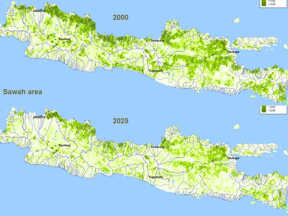 2025 Sawah area 2000