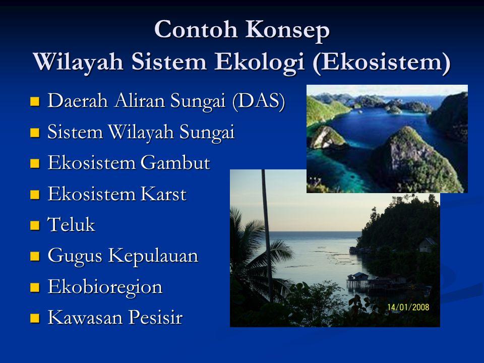 Contoh Konsep Wilayah Sistem Ekologi (Ekosistem) Daerah Aliran Sungai (DAS) Daerah Aliran Sungai (DAS) Sistem Wilayah Sungai Sistem Wilayah Sungai Eko