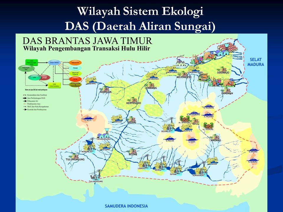 Wilayah Sistem Ekologi DAS (Daerah Aliran Sungai)